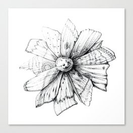 Mothflower Canvas Print