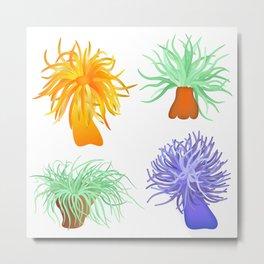 sea anemones Metal Print
