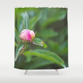 The Peonies are Almost in Bloom Shower Curtain