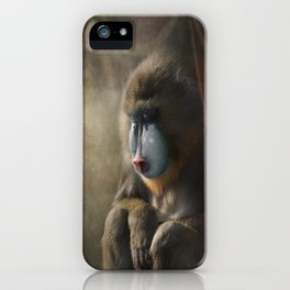 Waiting in the wings... iPhone Case