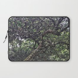 Tea Tree Laptop Sleeve