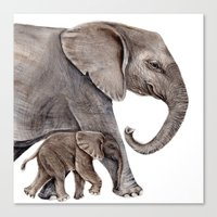 elephants Canvas Prints featuring Elephants by Goosi