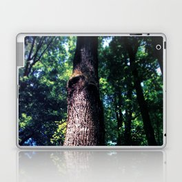 Tree Trunk Laptop & iPad Skin