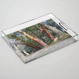 MADRONA WOODS Acrylic Tray