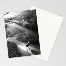 Dog in morning sunlight Stationery Cards