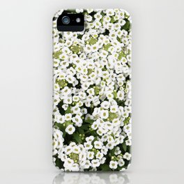 Sweet Alyssum iPhone Case