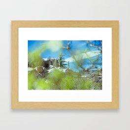 In nature #5 Framed Art Print