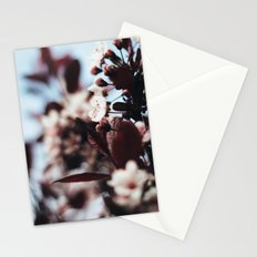 Soft Blossoms Stationery Cards
