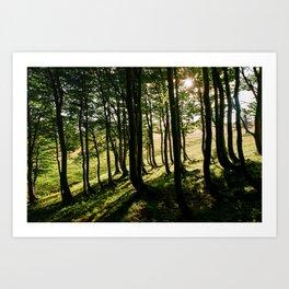Annaberg, Austrian Alps Art Print