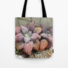Rainbow succulent Tote Bag