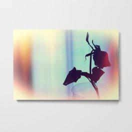 Wilting Rose 2 Metal Print