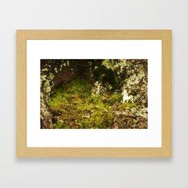 Unicorn Sighting #1 Framed Art Print