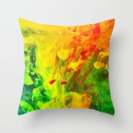 Polish Fountain Throw Pillow