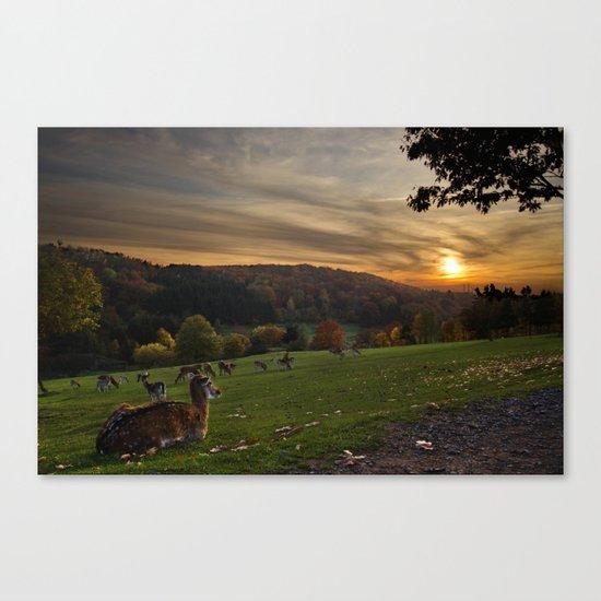 Serenity at Freisen Wildpark Canvas Print