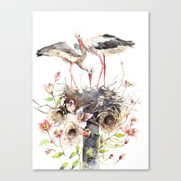 Stork Nest, Many Small Nests, Pale Pink Clematis Vine, Nature, White Storks Canvas Print