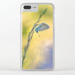 Polyommatus icarus II Clear iPhone Case