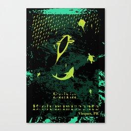 Bioluminescent Bay, Vieques, PR Canvas Print