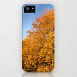 Fall, Golden tree, MOUNTAIN Trees iPhone Case