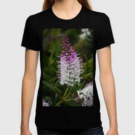 Hebe Lilac T-shirt