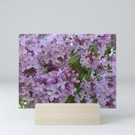 Lilac ~ Periwinkle Mini Art Print