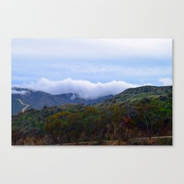 Cloudy Trees Canvas Print