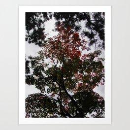 Art Drops in the Air (Japan) Art Print