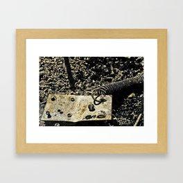 Burned Spring Framed Art Print