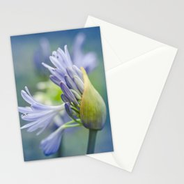 Love Flower Stationery Cards