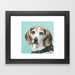 Sweet Beagle Painting, Distinguished Older Beagle Portrait Framed Art Print