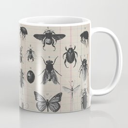 Vintage Insect Study on antique 1800's Ledger paper print Coffee Mug