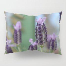 Lavender 3..... Pillow Sham