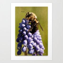 Mine!  says bee Art Print