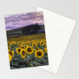 Summertime Sunflowers Stationery Cards
