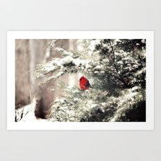 View the snowfall, Cardinal Art Print