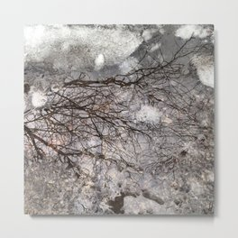 Reflection of Trees in Winter Metal Print