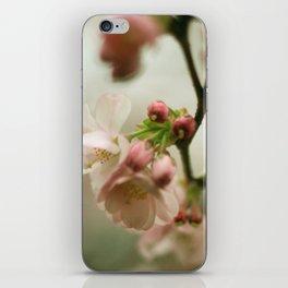 premonition iPhone Skin