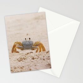 Portrait of a Ghost Crab Stationery Cards