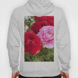 Spring Ranunculus Hoody