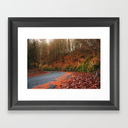 The Orange Forest Framed Art Print