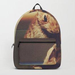 Rainbow Hipster Bunny Backpack