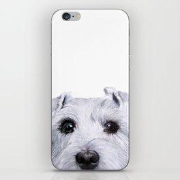 Schnauzer original Dog original painting print iPhone Skin