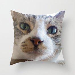 Kiko the Cat Throw Pillow