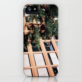 Beautiful Berliner buildings  iPhone Case