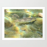trout Art Prints featuring Trout by turco napoletano
