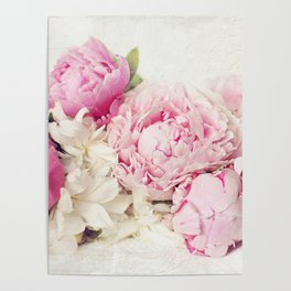 Peonies on white Poster