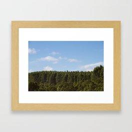 Hamakua Ranch. Framed Art Print