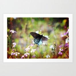 Grungy Blue Swallowtail Butterfly Art Print