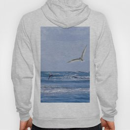 Terns diving into the sea Hoody