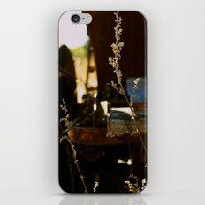 Weeds • Pumpkin Patch iPhone & iPod Skin