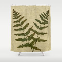 Ferns 2 by Kathy Morton Stanion Shower Curtain